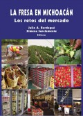 La Fresa en Michoacan, Los retos del mercado